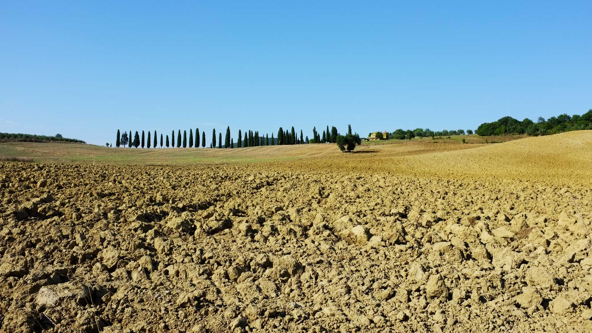 Truly immerse yourself in Tuscany